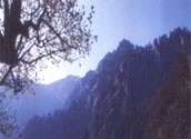 Trekking, Tirthan, Sainj Valley, Great Himalayan National Park 1